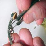 directors brasswind supply assortment 1