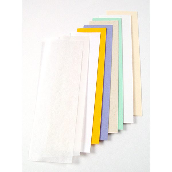 paper regulator strip set